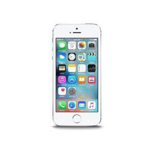 Huse si Carcase pentru iPhone 5S/5SE