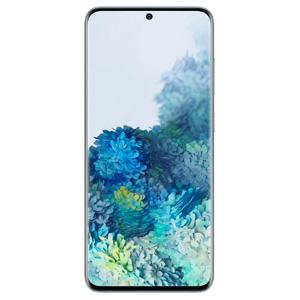 Huse si carcase pentru Samsung Galaxy S20